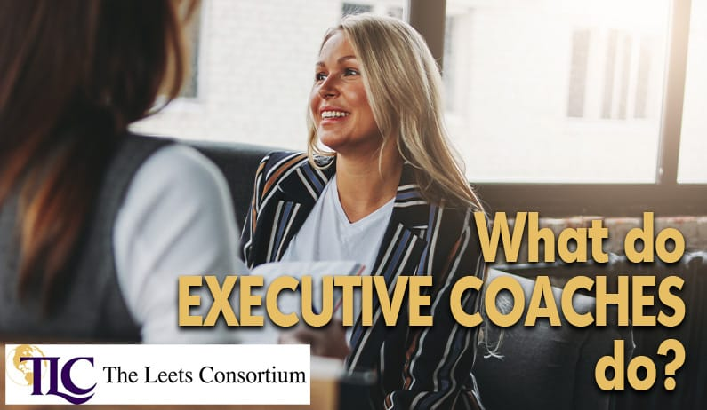the purpose of executive coaches and what they do
