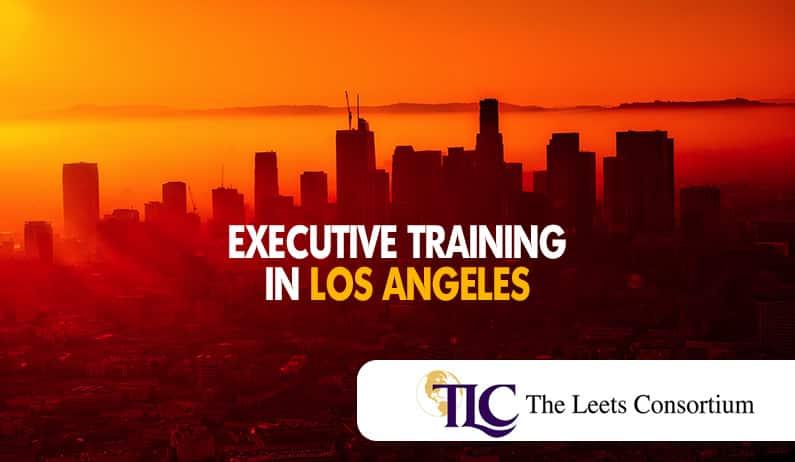 Executive Training in Los Angeles, CA & Top-Level Development